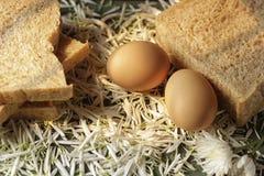 Eier u. Brote Stockfoto