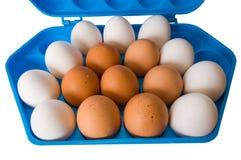 Eier und der dunkelblaue Behälter. Stockfoto