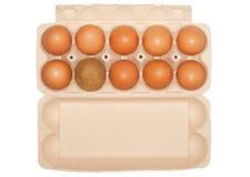 Eier und ein Fremder Stockbilder