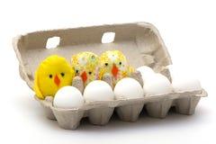 Eier und Hühner in einem offenen Kasten Stockbild