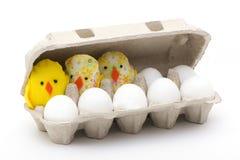 Eier und Hühner im geschlossenen Kasten Stockfotografie