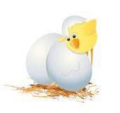Eier und Huhn stock abbildung