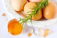 Eier und Rosmarin auf Weiß Stockbild