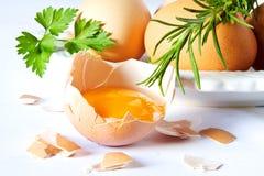 Eier und Rosmarin auf Weiß Stockfoto