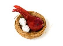 Eier und Vogel im Nest Stockfotos
