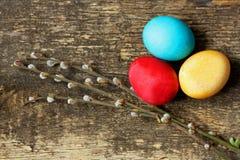 Eier und Weidenniederlassungen Lizenzfreie Stockfotografie
