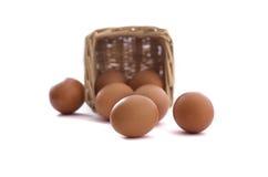 Eier vom Korb Stockfoto