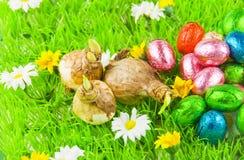 Eier, Wiesenschaumkraut und gestreifter Stoff Lizenzfreie Stockfotografie