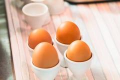 Eierbecher mit braunen Eiern Lizenzfreie Stockfotografie
