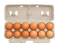 eieren Royalty-vrije Stock Foto