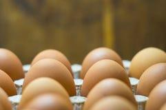 Eieren achtergrondclose-up Hoogste mening royalty-vrije stock afbeelding