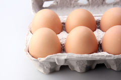 Eieren in beschermend geval Stock Foto's