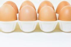 Eieren bij de verpakking op witte achtergrond Stock Fotografie