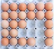 Eieren in blok Stock Foto's