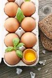 Eieren in de Doos van het Ei Stock Foto