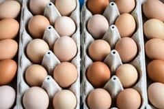 Eieren in de dozen Royalty-vrije Stock Afbeeldingen