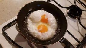 Eieren die in een pan worden gebraden stock videobeelden