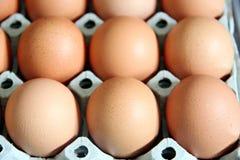 Eieren die in het paneel zijn. stock foto