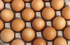 Eieren in document dienblad Royalty-vrije Stock Afbeelding