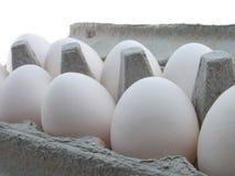 Eieren in doos Stock Afbeelding