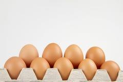 Eieren in doos op witte achtergrond Stock Foto