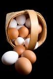 Eieren in een berkeschorsmand Royalty-vrije Stock Afbeelding