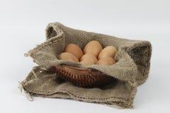 Eieren in een dienblad Stock Fotografie