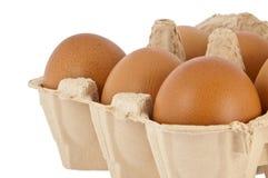 Eieren in een doos Stock Fotografie