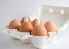 Eieren in een doos Royalty-vrije Stock Foto