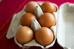 Eieren in een karton Stock Foto