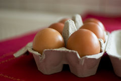 Eieren in een karton Stock Afbeelding