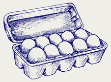 Eieren in een kartonpakket royalty-vrije illustratie