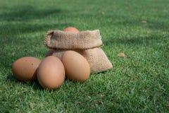 Eieren in een kleine jutezak Stock Afbeeldingen