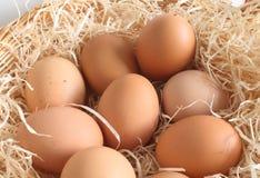 Eieren in een mand Royalty-vrije Stock Foto
