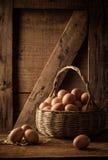 Eieren in een mand Royalty-vrije Stock Foto's