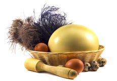 Eieren in een mand Stock Foto
