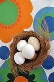 Eieren in een nest Stock Afbeeldingen