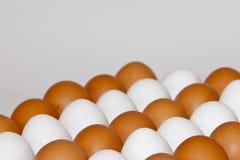 Eieren in een rij Royalty-vrije Stock Foto's