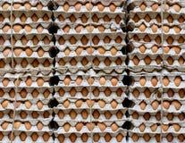 Eieren in een winkel Stock Foto's