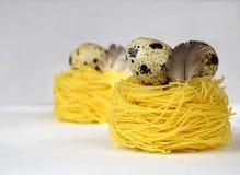 Eieren en deegwaren als nest stock afbeeldingen
