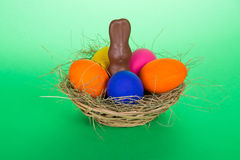 Eieren en een chocoladekonijn royalty-vrije stock foto's