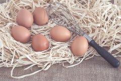 Eieren en eggbeater op droog gras Royalty-vrije Stock Afbeeldingen