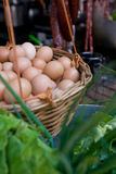 Eieren en groenten stock afbeeldingen