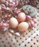Eieren en uien in een mand, onduidelijk beeldwijnoogst Royalty-vrije Stock Afbeeldingen