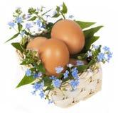 Eieren en vergeet-mij-nietjes stock afbeelding