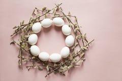 Eieren en wilg stock foto