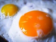 Eieren gebraden kippenkwartels Stock Fotografie