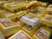Eieren in gele en witte dienbladen Stock Fotografie