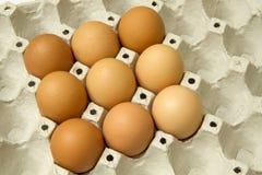 Eieren in het pakket Royalty-vrije Stock Fotografie