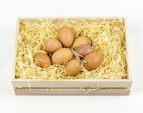 Eieren in houten krat Royalty-vrije Stock Afbeeldingen